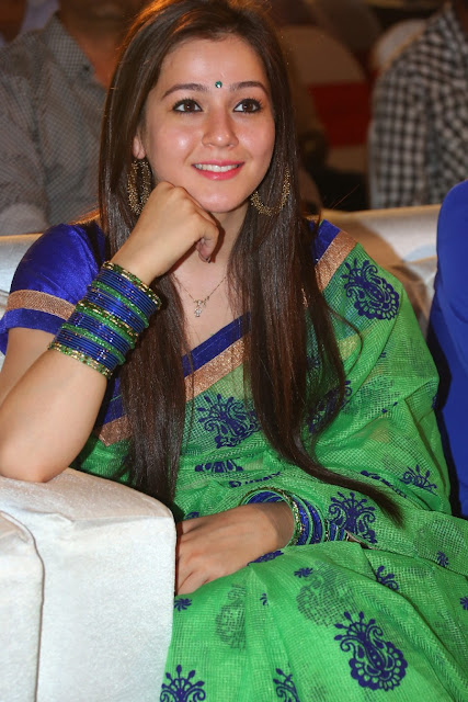 Priyal Gor Actress Saree Photos