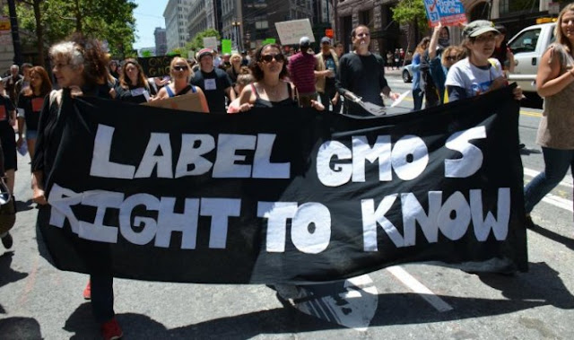 Transgénicos: Nueva ley de etiquetado en Estados Unidos solo incluye algunos OMG