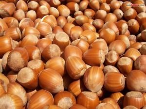 Las avellanas son producto de temporada en septiembre u octubre