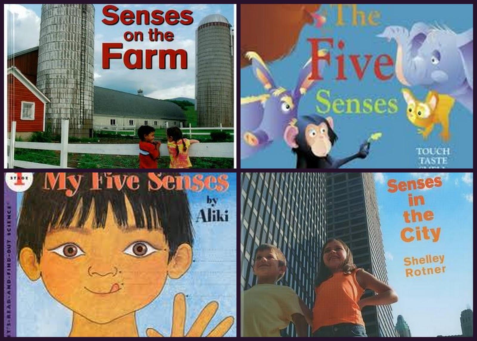 The Johnson Journey Unit Theme 5 Senses