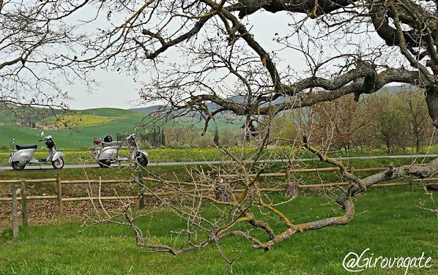 vintage tours vespa quercia checche