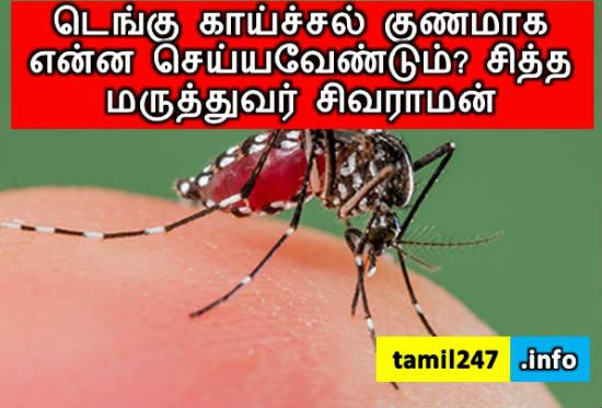 டெங்கு காய்ச்சல் குணமாக என்ன செய்யவேண்டும்? சித்த மருத்துவர் சிவராமன், dengue fever nilavembu kashayam eppadi kudikka vendum, dr.sivaraman advice.