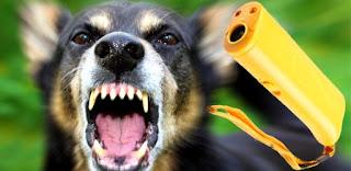 купить отпугиватель собак в украине для велосепедиста котов и кошек