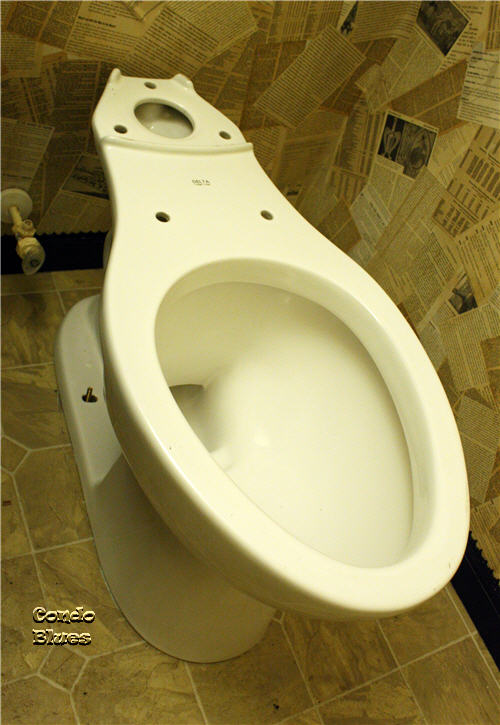 Porcelain Is Heavy You Might Want A Helper To Help Flip The Toilet Over From Step 2 And Place It