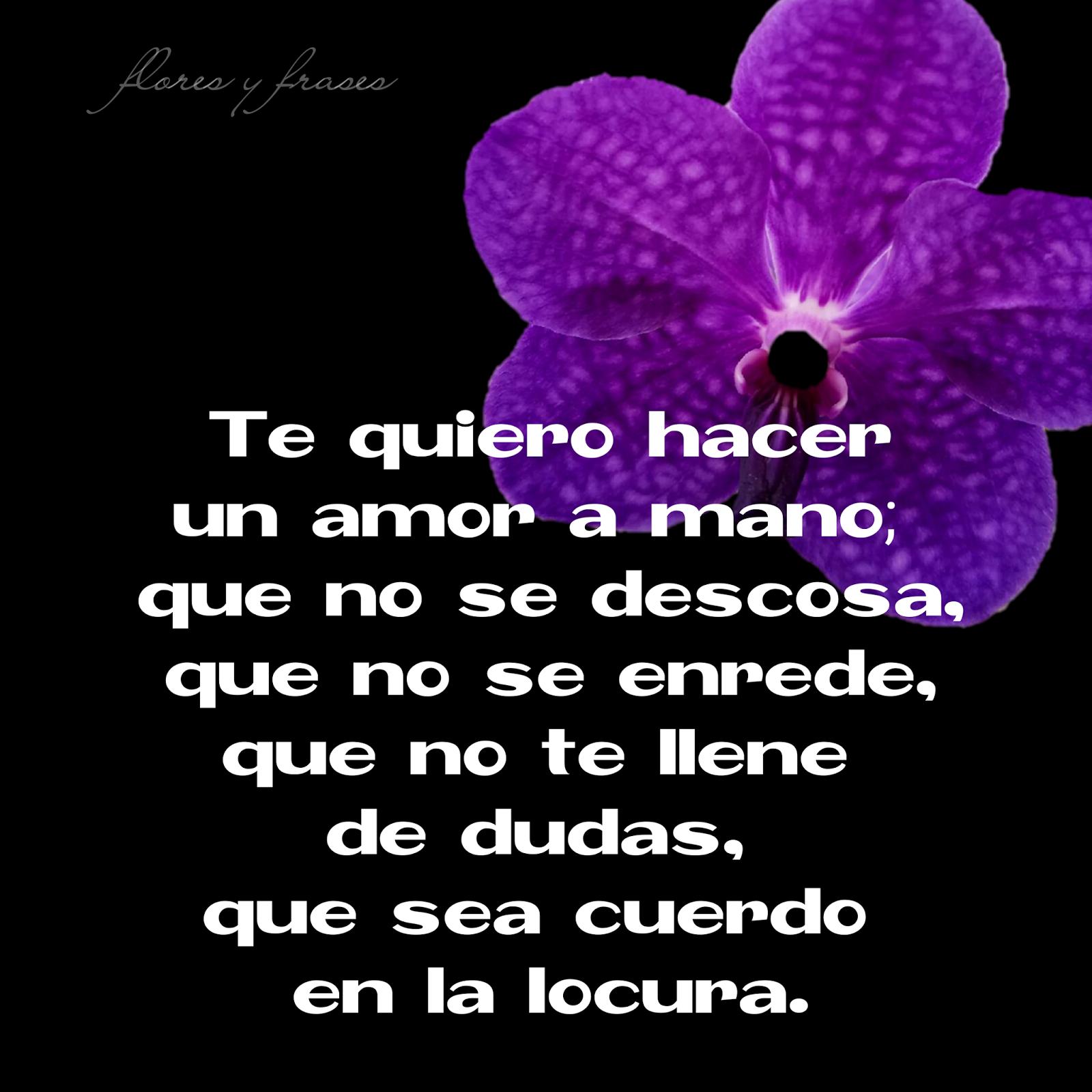 Flores Y Frases Te Quiero Hacer Un Amor