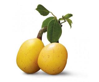 Owoc drzewa marula