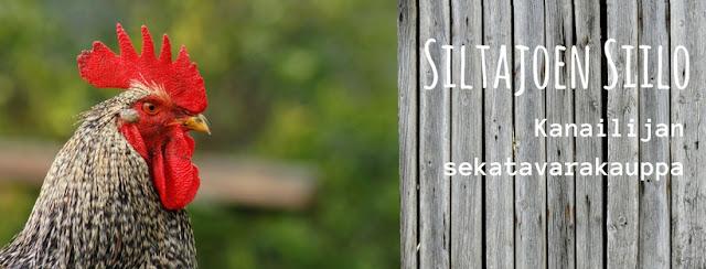http://siltajoensirkus.mycashflow.fi/