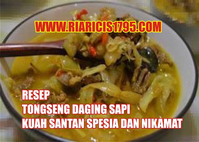 Resep Tongseng Daging Sapi Kuah Santan Spesial dan Nikmat