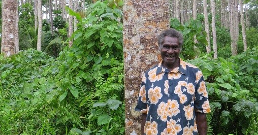 Rebuilding Vanuatu's forestry sector: helping farmers turn trees into money