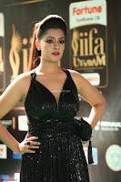 Varalaksmi in Green Glittering Sleeveless Backless Gown at IIFA Utsavam Awards 2017  Day 2  Exclusive 40.JPG