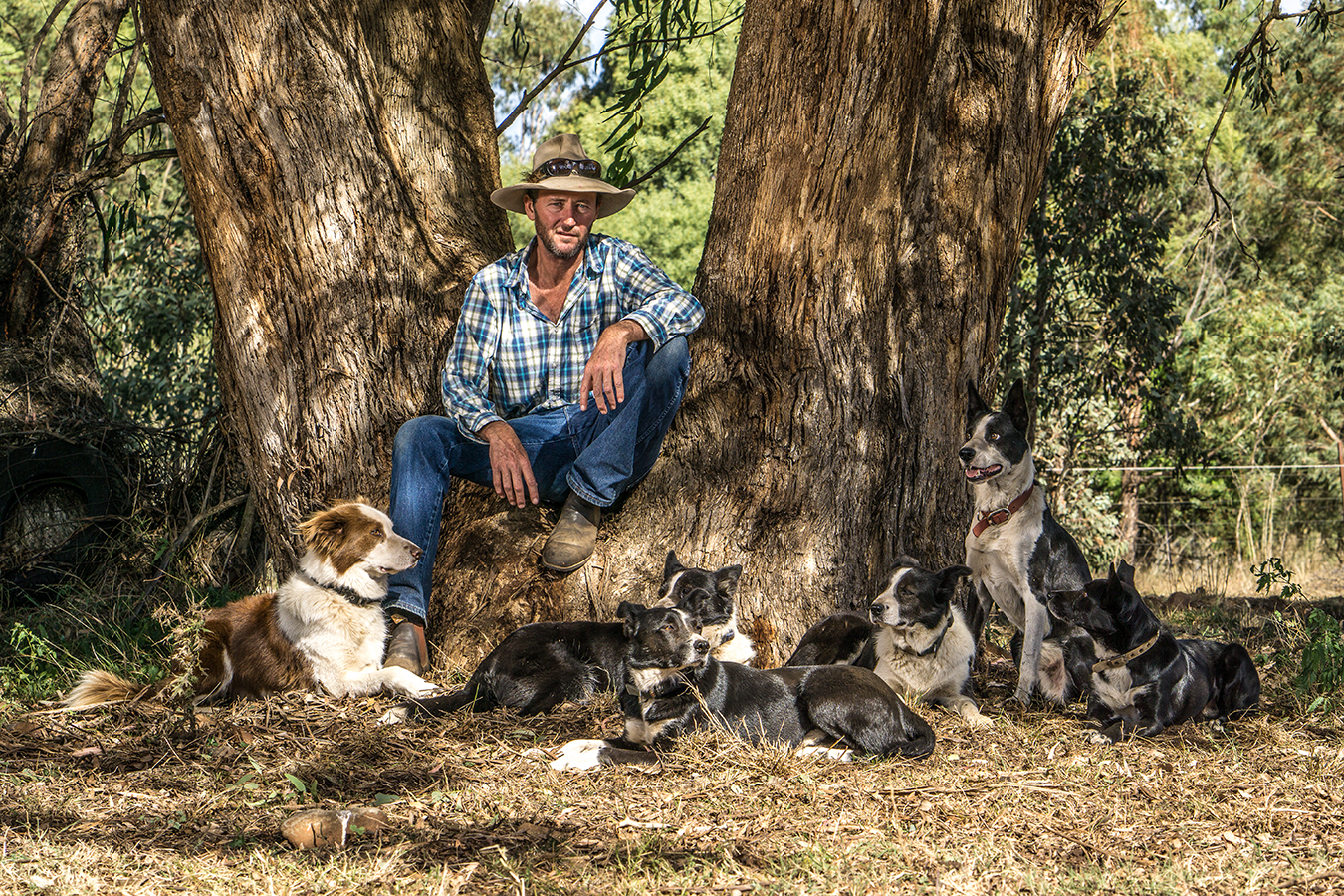 Backtrack Founder Bernie Shakeshaft leans on a large tree surrounded by some of the dogs