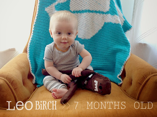 oh, hopscotch!: leo birch :: 7 months