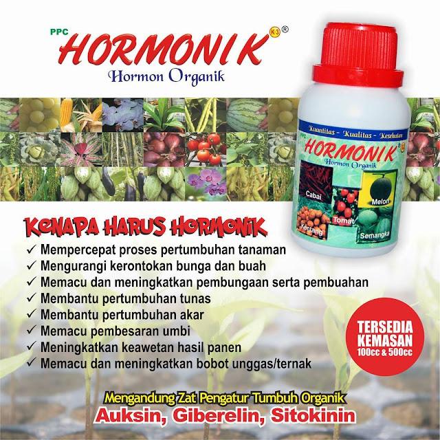 Hormon Pertumbuhan Organik Hormonik - Hormon Pertumbuhan Yang Sangat Dibutuhkan Tanaman