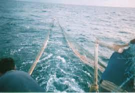Salah satu home base nelayan cantarang yang berada di pantai utara jawa yakni juwana Kabar Terbaru- KEGALAUAN NELAYAN CANTRANG