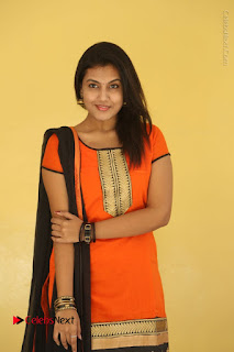 Telugu Actress Chandana Stills in Salwar Kameez at Karam Dosa Movie Press Meet  0014.JPG