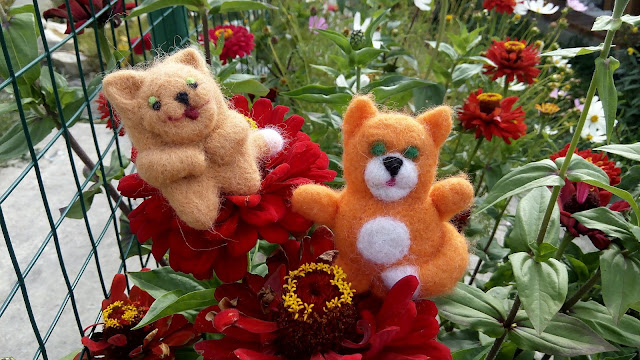 Рыжик и Хитрюга - забавных два кота...