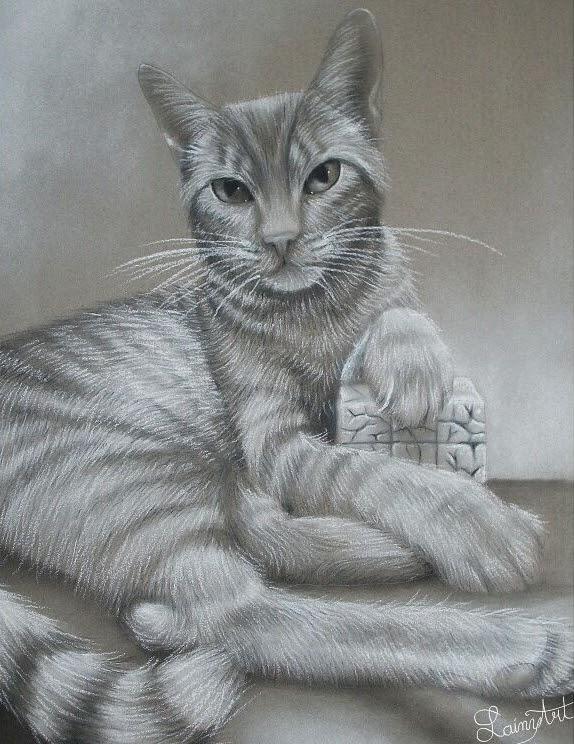 01-Sometimes-Cats-Look-Like-Kings-Alaina-Ferguson-Animal-Portraits-Cats-Dogs-and-a-Guinea-Pig