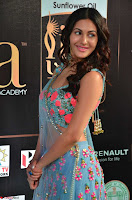 Amyra Dastur in Flower Print Choli Transparent Chunni at IIFA Utsavam Awards002.JPG