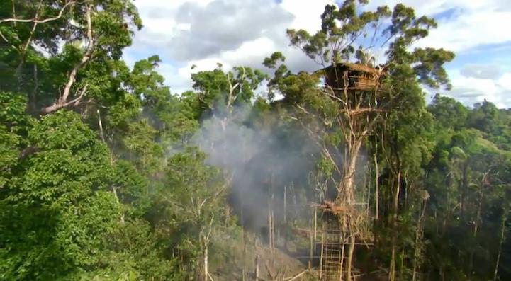 Suku Korowai Punya Rumah Pohon
