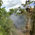 Suku Korowai Punya Rumah Pohon Paling Tinggi di Dunia, Pada Pohon Tertinggi