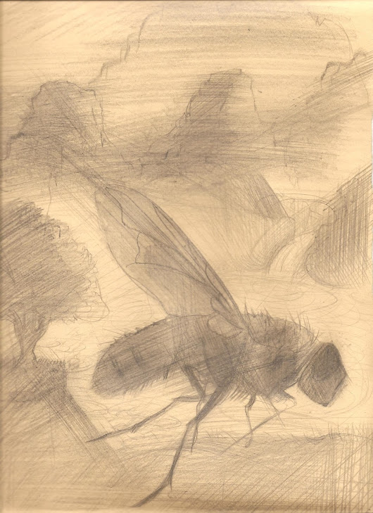 Landscape with Fly #1