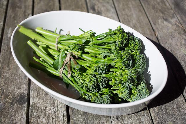 broccolini, grilli