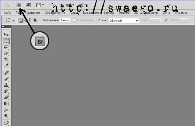 Создание слайд-шоу (web-галереи) и презентаций в PDF в Photoshop CS5
