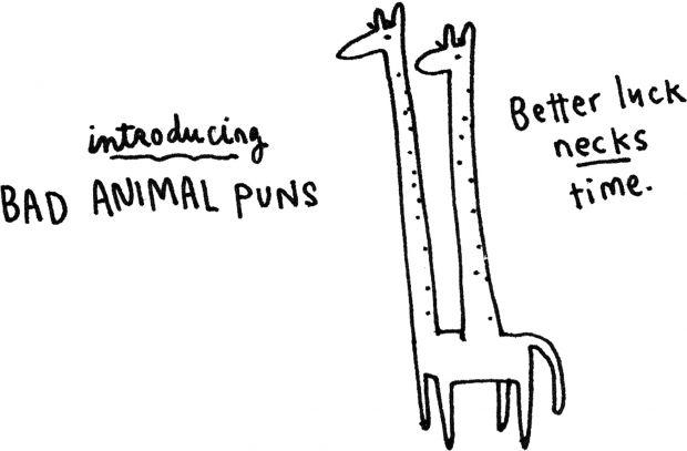 Bad animal puns