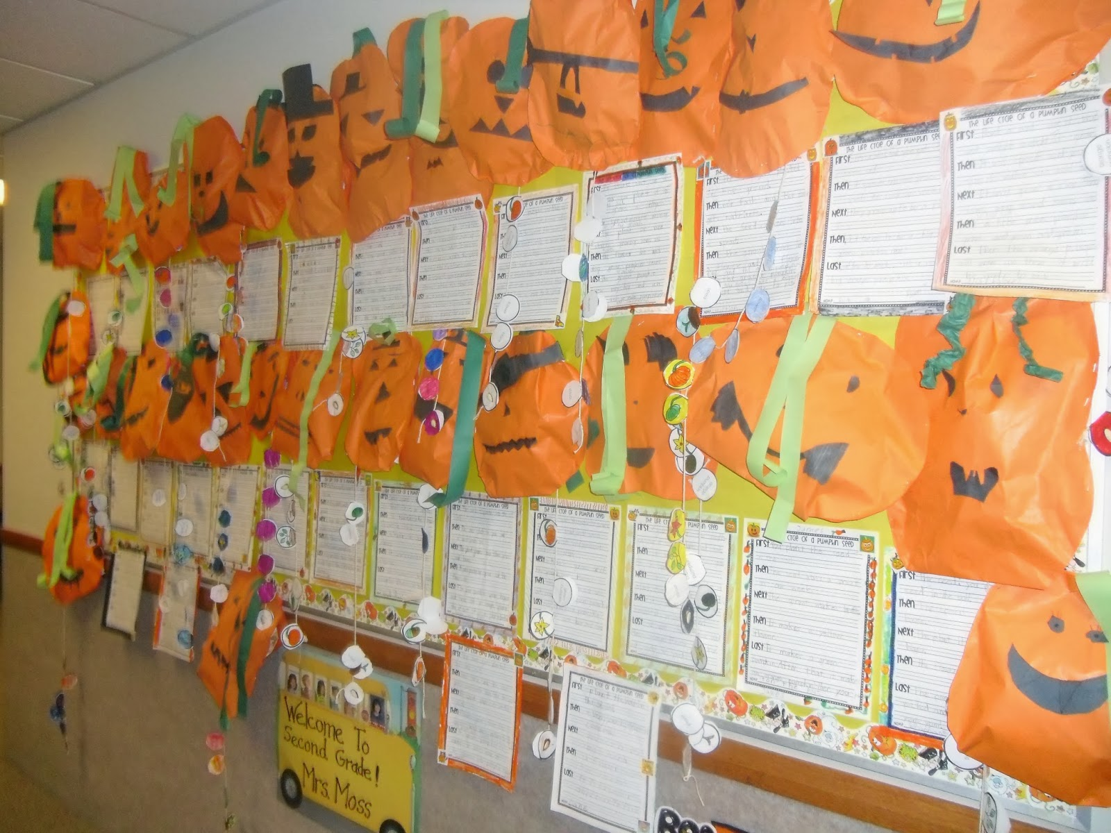 Patties Classroom Pumpkin Life Cycles