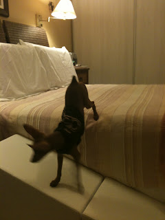 rampas camas altas