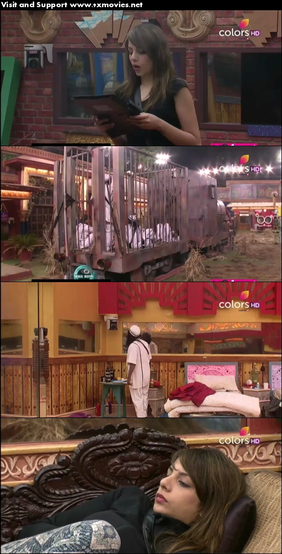 Bigg Boss S10E80 03 Jan 2017 HDTV 480p