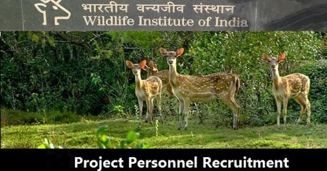 Recruitment of Project Personnel @ Wildlife Institute of India - Bivash Vlogs