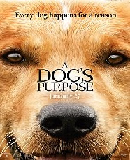 Sinopsis Film A Dog's Purpose (2017)