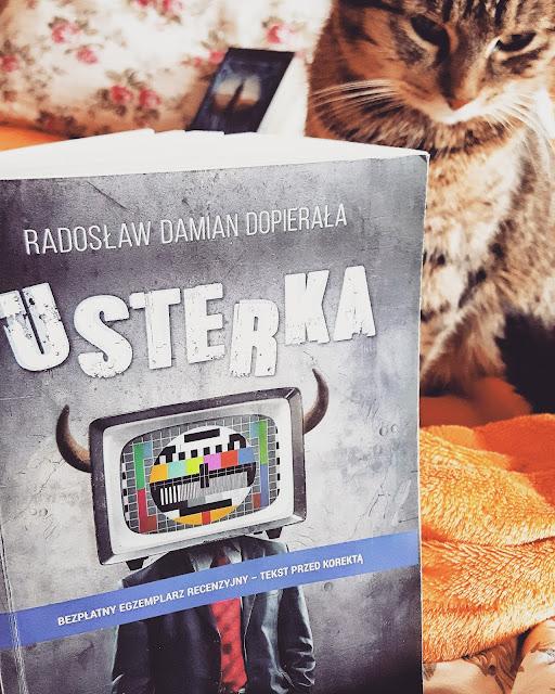Radosław Damian Dopierała - Usterka