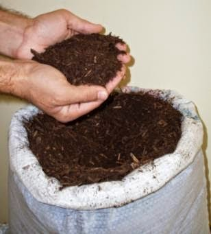 preparazione-substrato cannabis