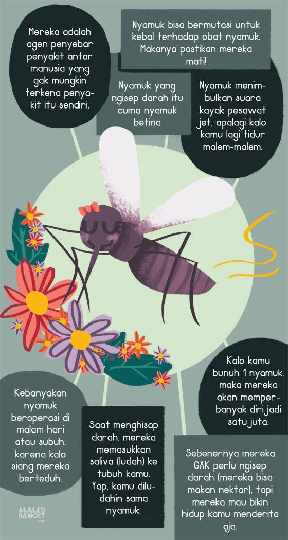 Fakta Unik Tentang Nyamuk