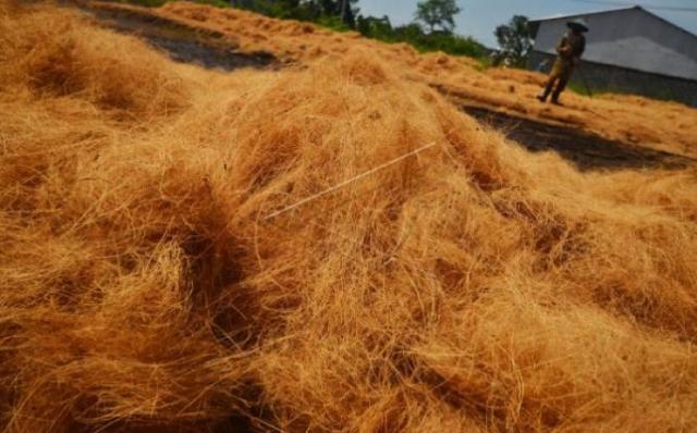 Pemanfaatan Limbah Sabut Kelapa sebagai media pembakaran