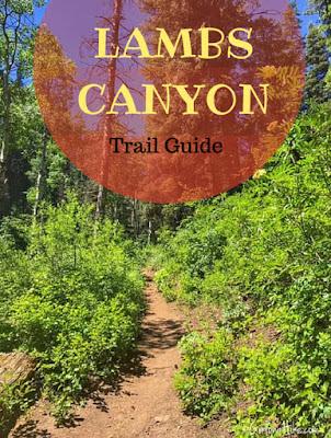 Hiking Lambs Canyon, Utah