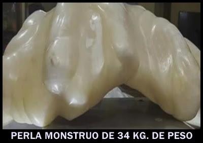 perla-monstruo