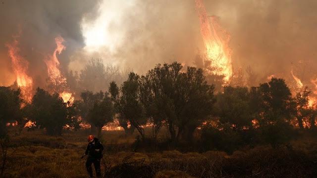 RescEU: Η Ευρωπαϊκή απάντηση στις πυρκαγιές