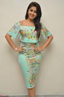 Nikki Galrani in Cute Dress Dress At Marakathamani Success Meet ~  Exclusive 006.JPG