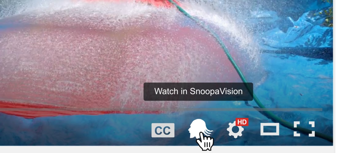 Snoop Dogg and YouTube Team Up to Launch SnoopaVision | Rap-Up