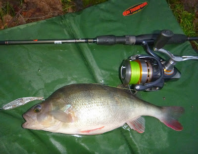 Tide Lines Martin's fishing blog: Canal red letter day -Zeds, Perch
