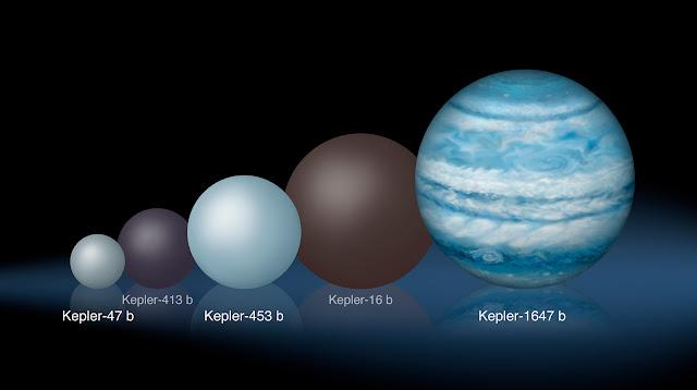 So sánh tương quan kích cỡ của Kepler-1647b so với những ngoại hành tinh quay xung quanh hai sao từng được khám phá trước đây. Tác giả đồ họa : Lynette Cook.