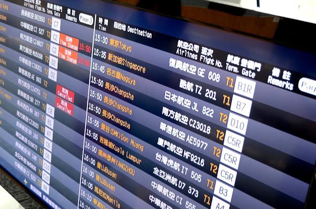 공항에서 돌아갈 항공편을 보며