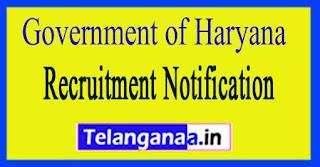 Government of Haryana Recruitment Notification 2017