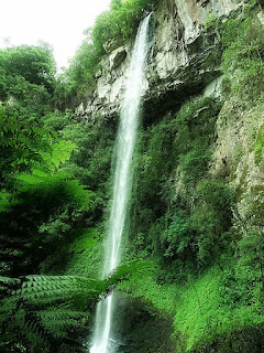 Cascata ao lado da Gruta Nossa Senhora de Lourdes, em Caxias do Sul. Vegetação nativa em torno da queda d´água.