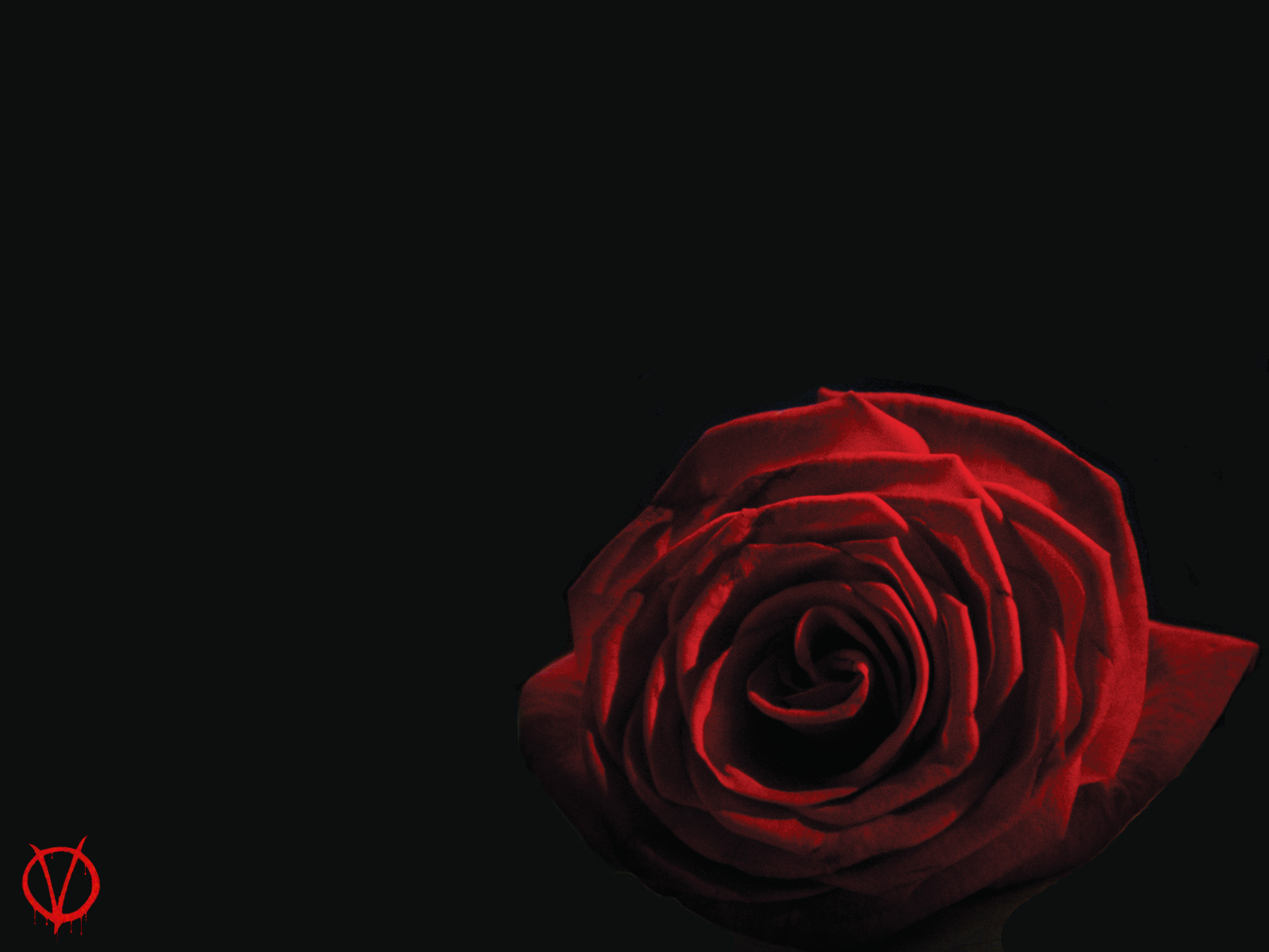 v for vendetta rose wallpaper - photo #21