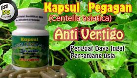 obat herbal vertigo dan nutrisi otak