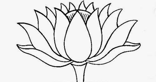 Sketsa Bunga Teratai  Gambar Pemandangan